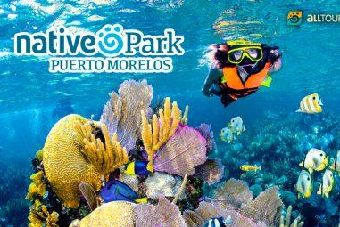 Native Park Puerto Morelos – $349 mxn ¡promoción para socios Acceso Sin Límite!!