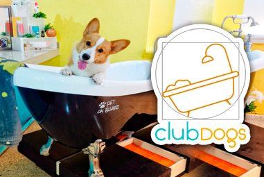 Club Dog's Cancún